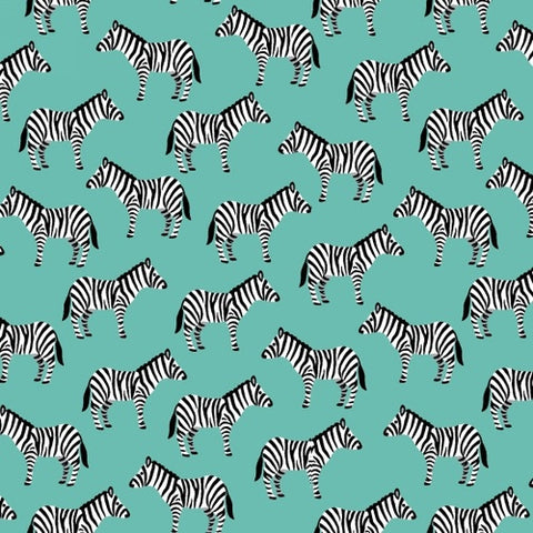 Little Explorers - Zebras in Aqua