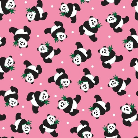 Little Explorers - Pandas in Pink