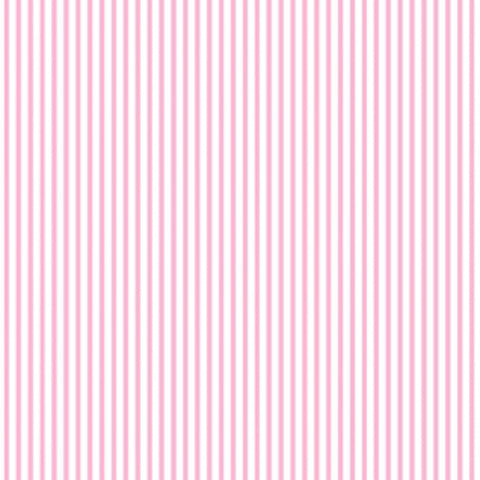 Dress Stripe - Blush