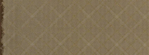Carolyn Friedlander - Collection CF - Grid with Single Border in Brown