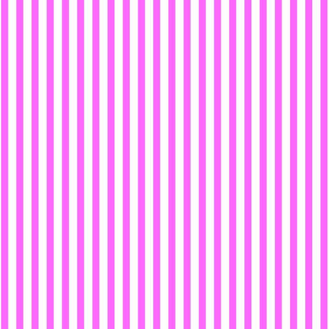 Dashwood Studios Back To Basics - stripes in candy