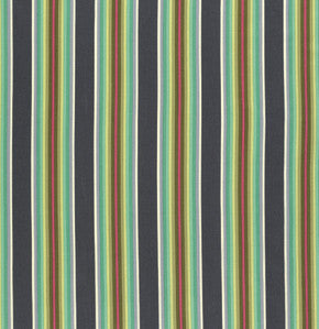 Tula Pink Chipper - Tick Tock Stripe Mint