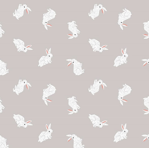 Rae Ritchie New Here - Bunnies in Fog