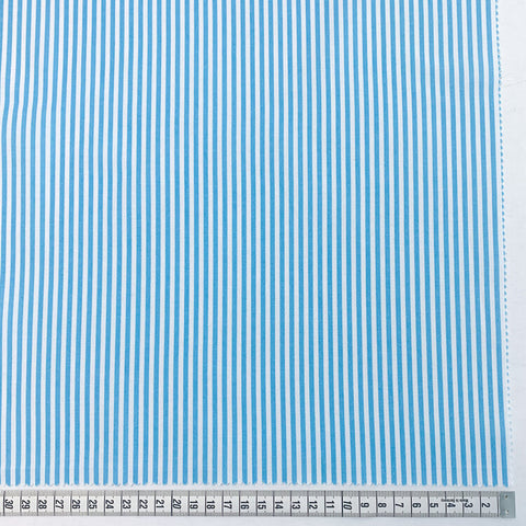 "Gordon 1/8"" Stripe - Turquoise and White"