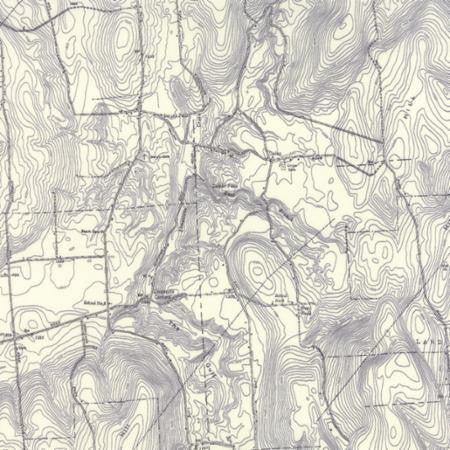 Alpine by Erin Michael Topography Map Grey