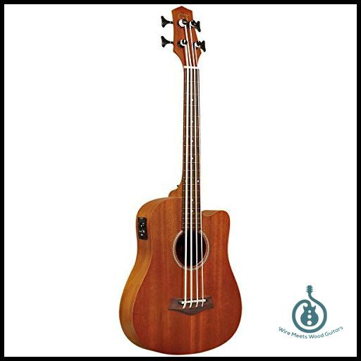 Gold Tone M-BASSFL 23-Inch Scale Fretless Acoustic-Electric MicroBass w/ Gig Bag