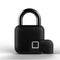Smart Fingerprint/Biometric Padlock - L3