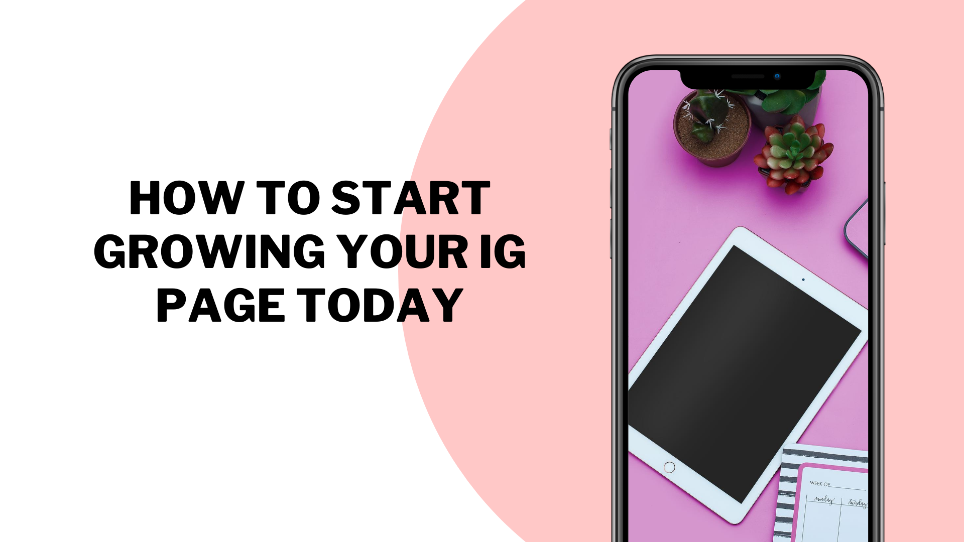 How To Start Growing Your IG Page Today