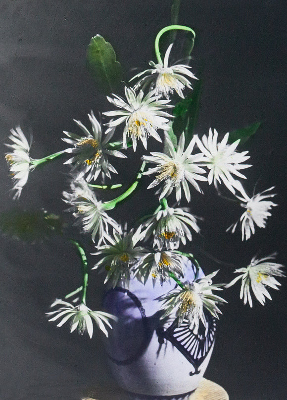 T. Enami, Chrysanthemums in a Vase