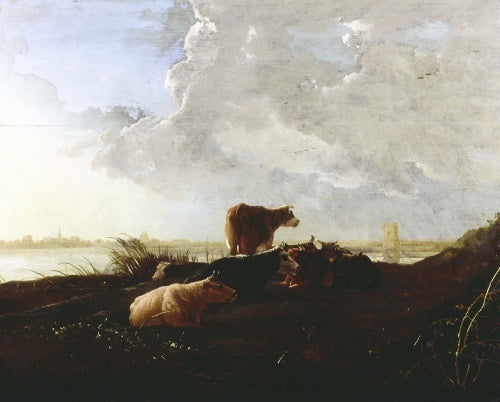 Cattle near a River