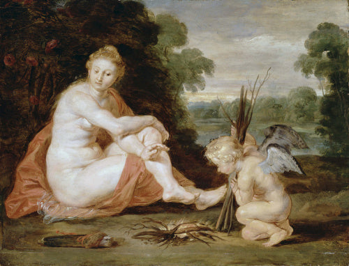 Venus and Cupid warming themselves (Venus frigida)