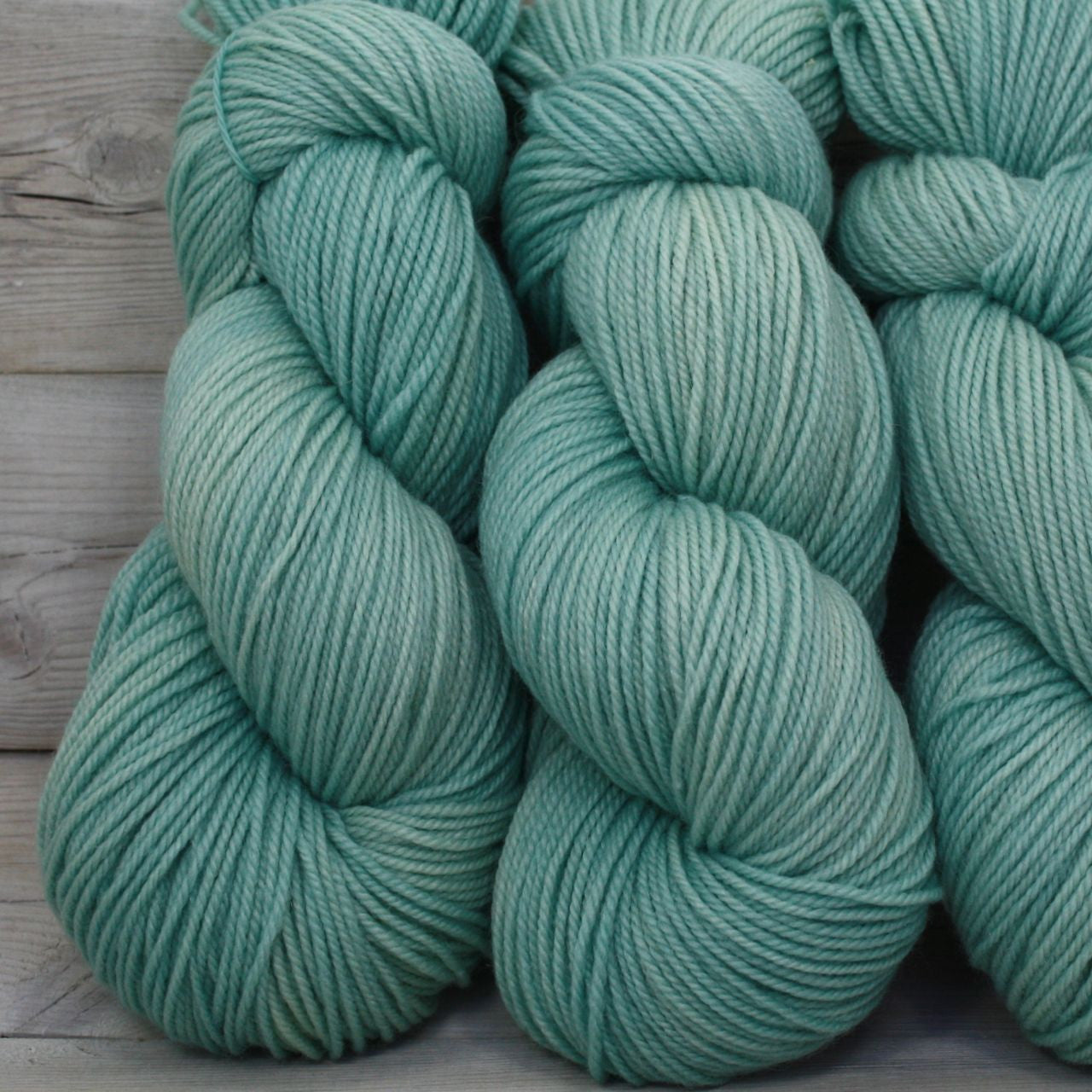 Colorway: Araucana | Dyed to Order Yarn
