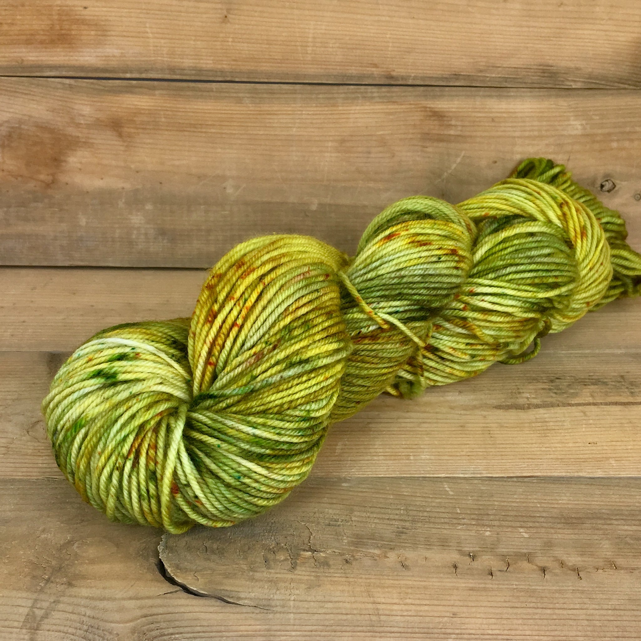 Colorway: Tree Hugger | Dyed to Order Yarn
