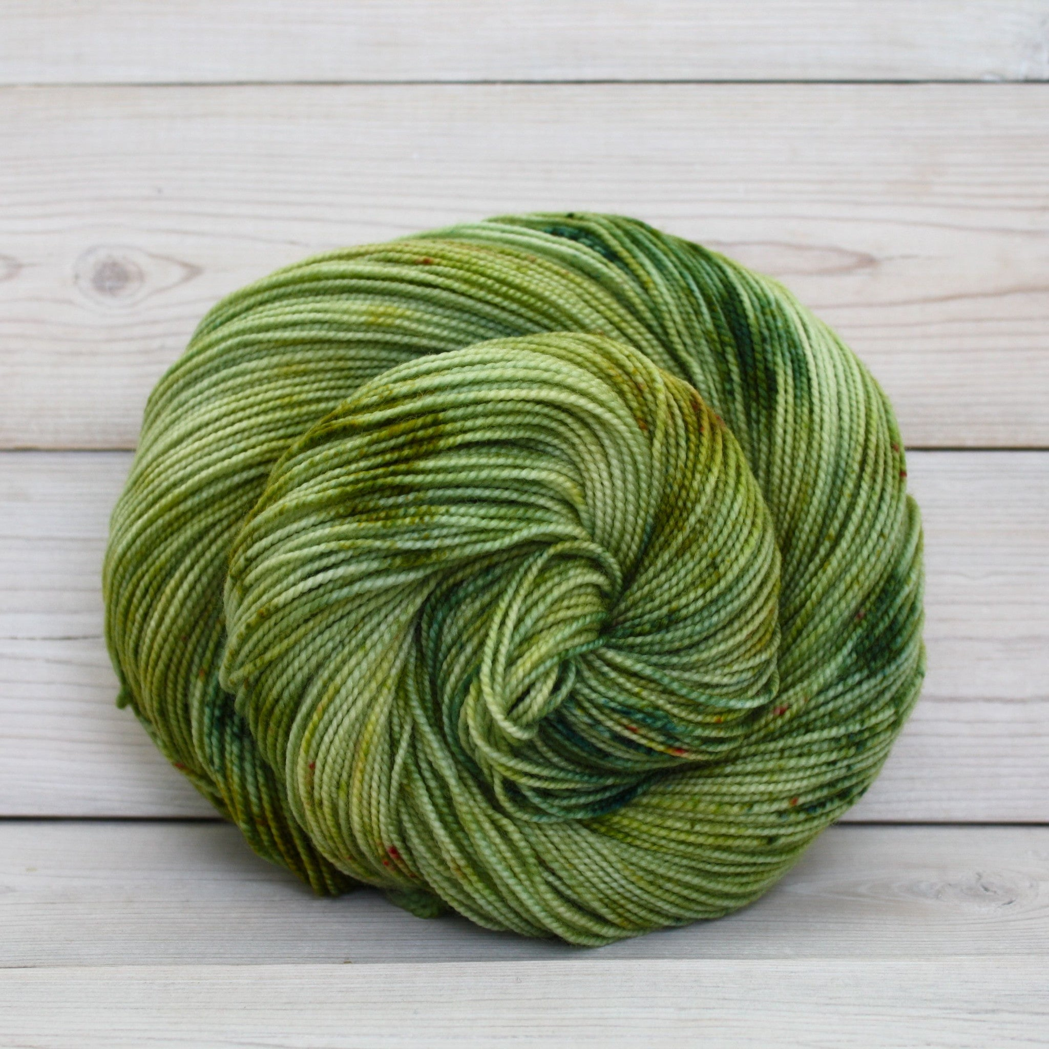 Colorway: Lichen | Dyed to Order Yarn