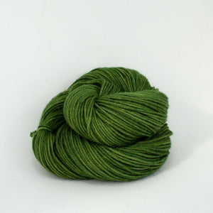 Vega Yarn | Colorway: Moss