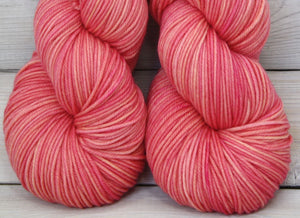 Calypso Yarn | Colorway: Sorbet