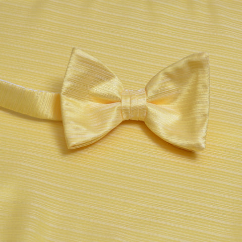 Sunbeam Horizontal Bow Tie with Matching Pocket Square