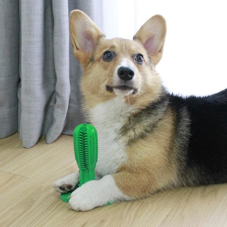 The Doggy Toothbrush Brushing Stick