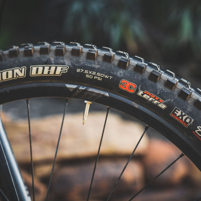 Minion DHF - The Best All-Conditions Mountain Bike Tire