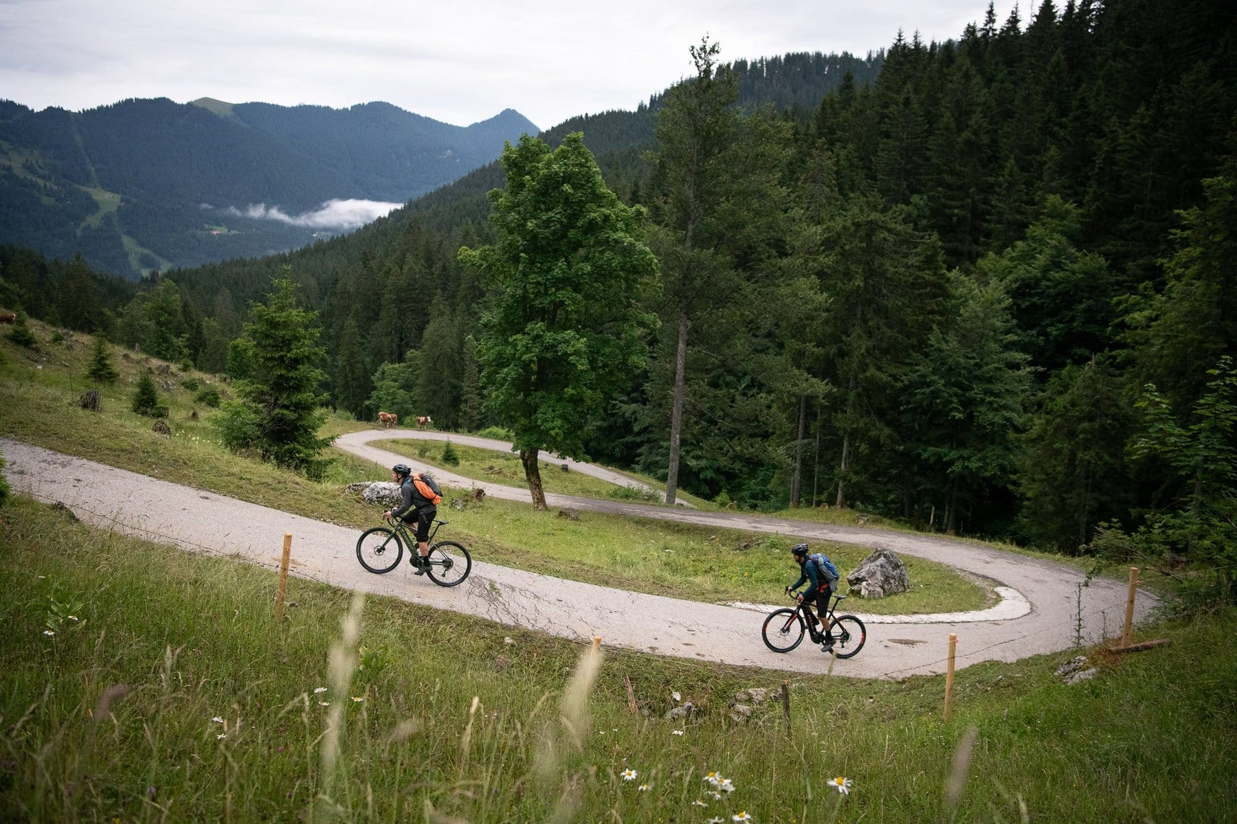 Gravel Biking Blog - The Best Tips for Adventure Cycling