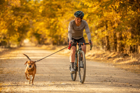 CYCLISTS RIDING WITH THEIR DOG