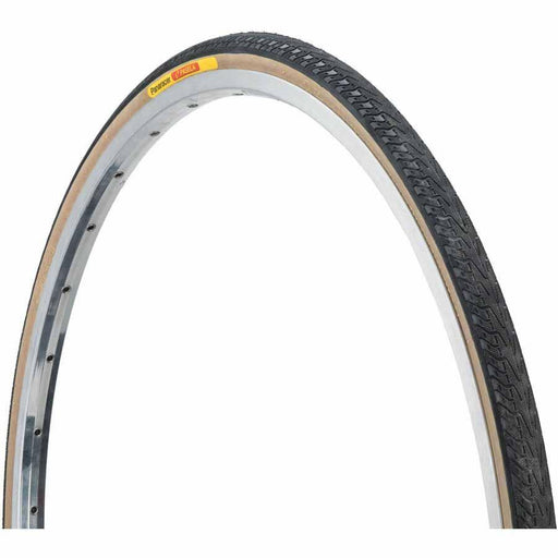 Pasela 27x1-1/4 Bike Tire Black/Tan Steel