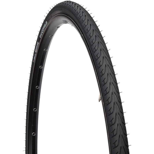 Randonneur II Bike Tire: Wire Bead, 700x28