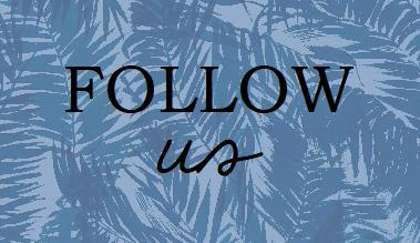 Follow us to stay up to date on happenings!