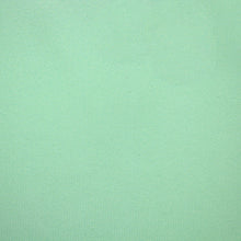 Load image into Gallery viewer, Solid SeaFoam Pleated Mask