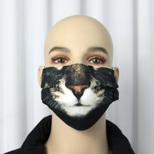 Load image into Gallery viewer, Cat Novelty Pleated Mask