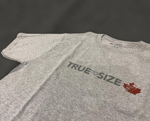 'TRUE TO SIZE' CHAMPION T-SHIRT GREY 3M