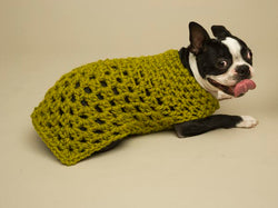 Granny Square Dog Sweater Pattern (Crochet)