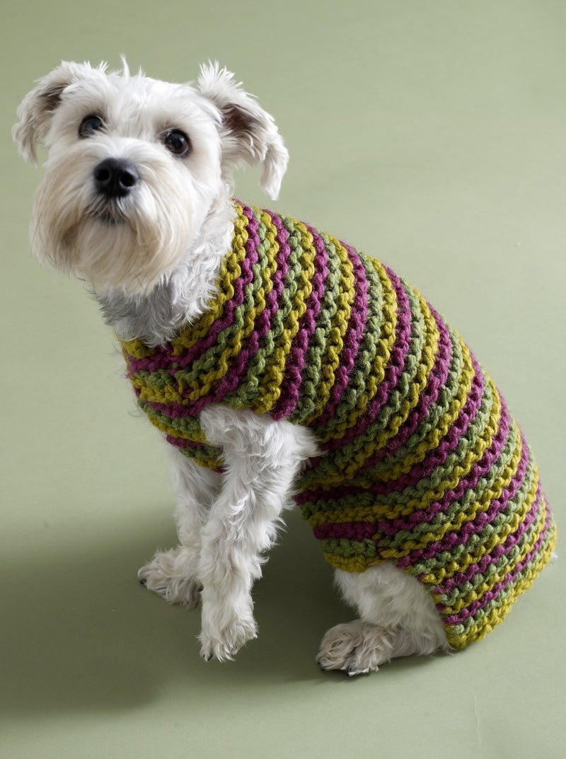 City Stripes Dog Sweater Pattern (Knit)
