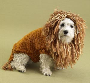 King of the Beasts Lion Dog Sweater Pattern (Knit)