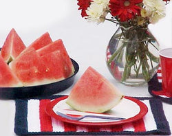 Patriotic Placemats and Coasters Pattern (Knit)