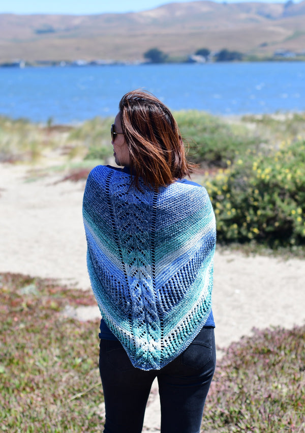 Knit Kit - My First Knit Shawl