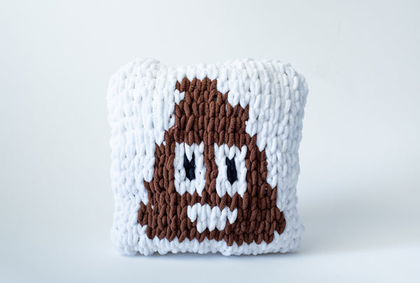 Poop Emoji Pillow (Craft)