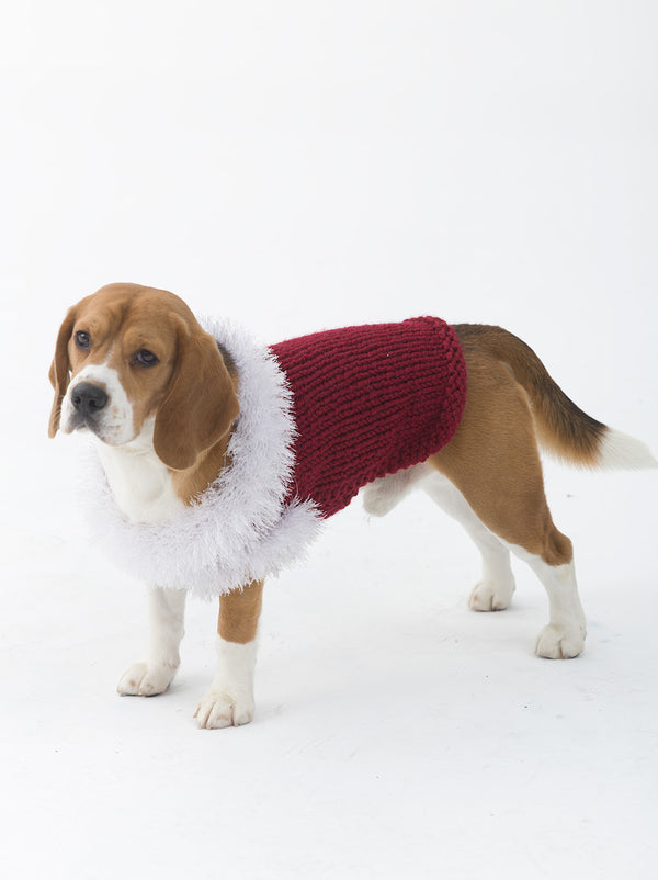 The Celebrator Dog Sweater (Knit)