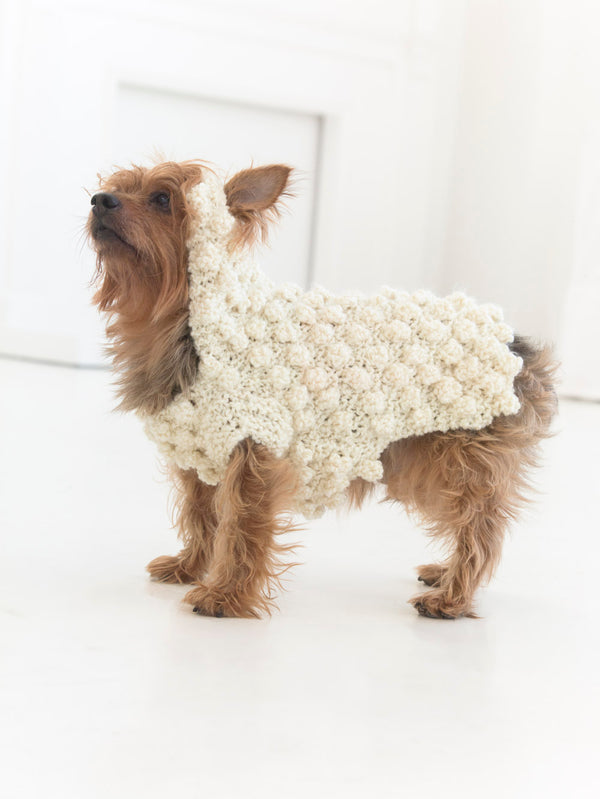 Year Of The Dog Sweater (Knit)