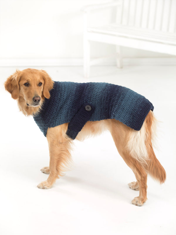 Asta Dog Sweater (Crochet)
