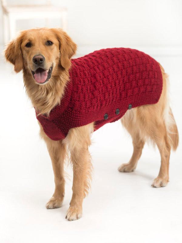 Clifford Dog Sweater (Knit)