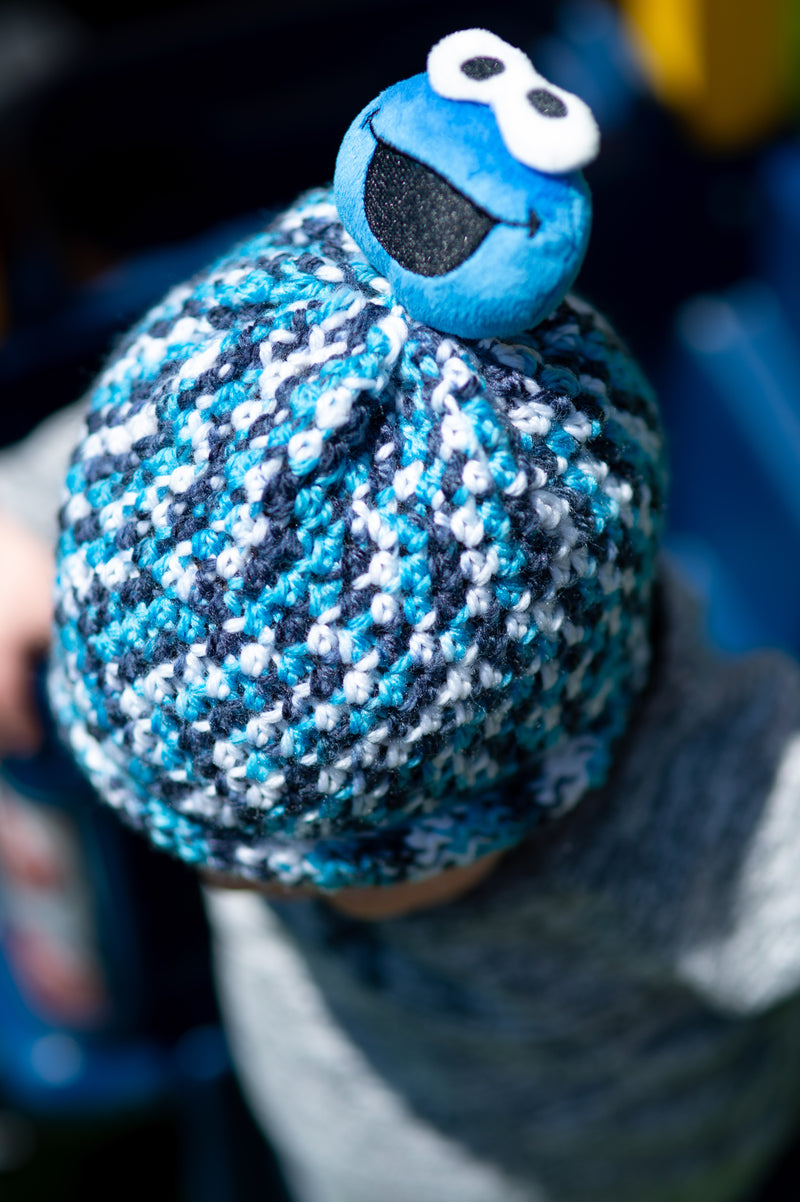 Crochet Cookie Monster Hat