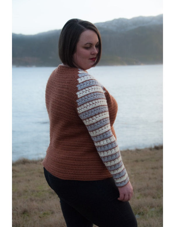 Striped Sleeves Raglan (Crochet)