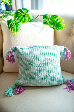 Zebra Pillow (Crochet)