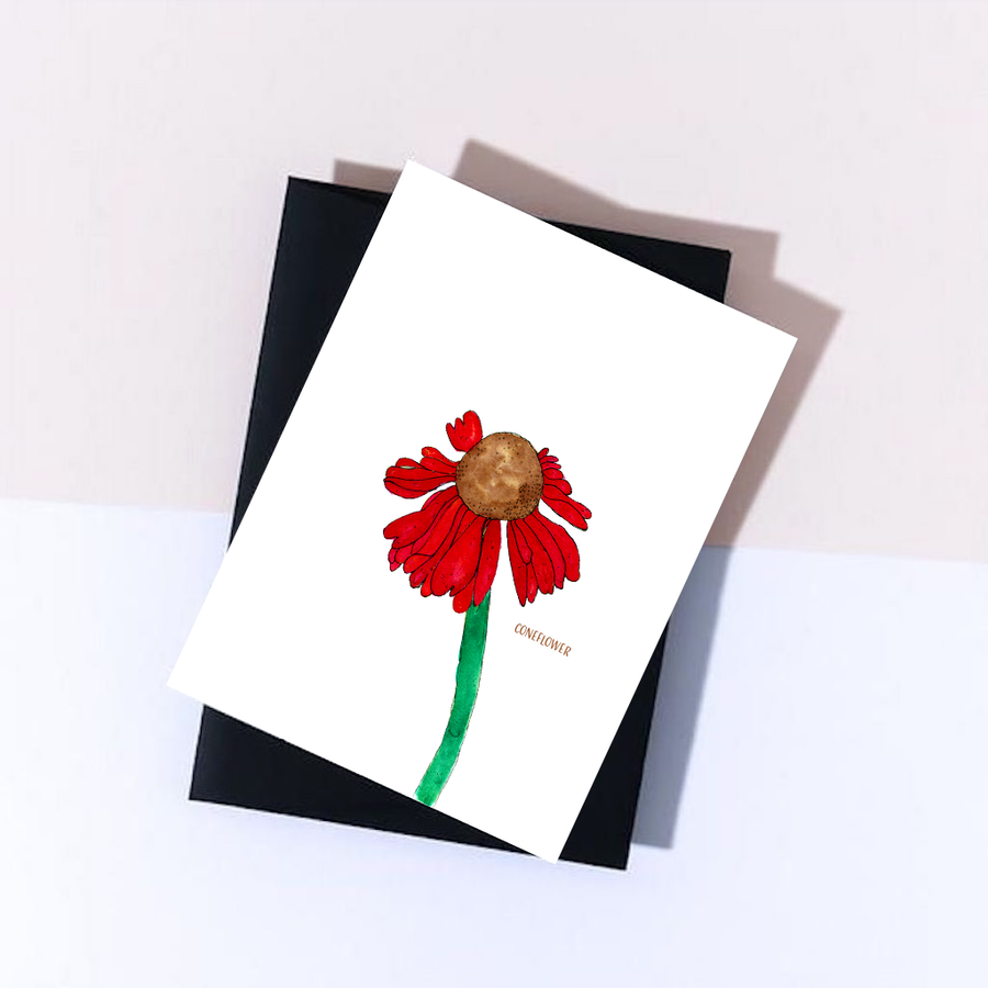 wildflower greeting cards, red flower greeting card, coneflower flower greeting card