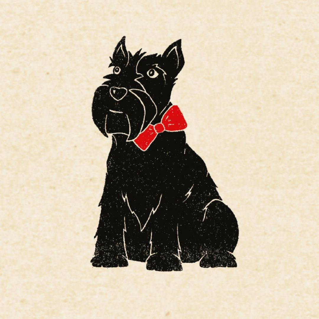 Carta regalo - 1 foglio - Scottish terrier