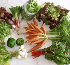 Worden Farm Membership: ORGANIC VEGGIE BOX [in Osprey]