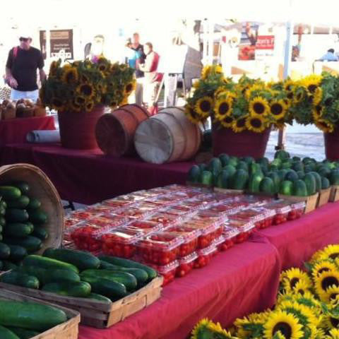 Worden Farm Membership: ORGANIC FARMERS MARKET [in Sarasota or Saint Petersburg]