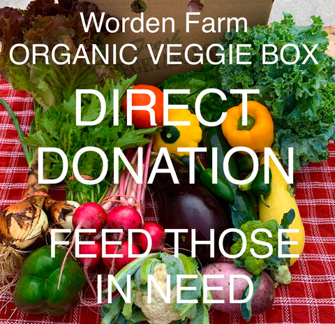 ORGANIC VEGGIE BOX - DIRECT DONATION - FEED THOSE IN NEED - $25/week x 4 weeks = $100