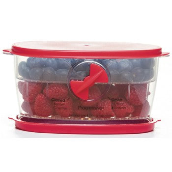 Progressive Prepworks Fresh Berry Keeper